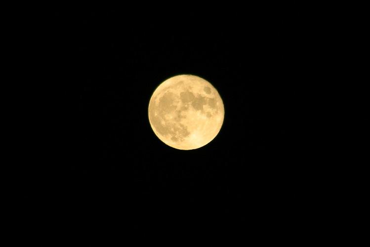 月の季節へ