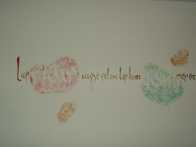 能の花 Vol.3 作品紹介 その7